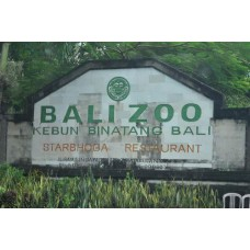 Bali Zoo + Lunch Indonesian